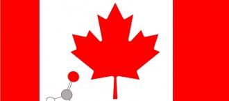 Regolamentazione dei limiti di emissione di formaldeide: nuova normativa in CANADA.