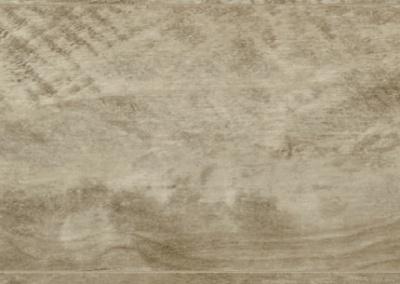 D 3953 CA - BETULLA PLATINUM